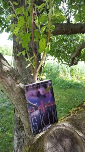 Places to Read - in an apple tree