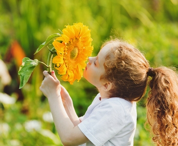 girl smells a sunflower